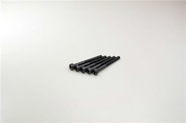 METALLIC CAP SCREWS 3X30MM (5)