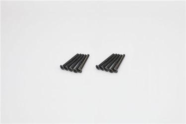 FLAT HEAD 3X30MM METALLIC SCREWS (10)