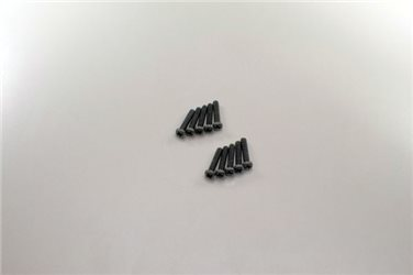 ROUND HEAD 2X10MM METALLIC SCREWS (10)